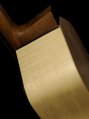 sides - laterales -éclisses